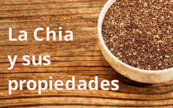 Chia – Una pequeña semilla con un gran potencial de negocio y propiedades