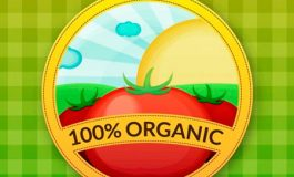 Ideas para poner una Tienda de Productos Orgánicos