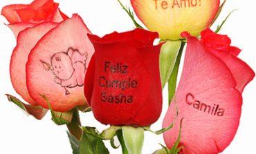 Las Flores Impresas, Una Idea De Negocios Original