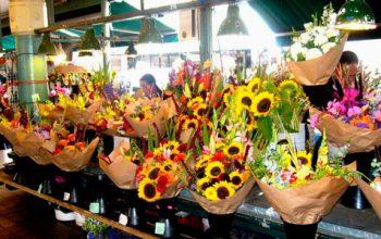 Idea de Negocio: Venta Ambulante de Flores